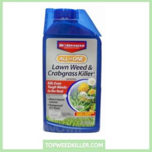 best weed killer for flower gardens