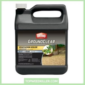 Ortho GroundClear Vegetation Killer Concentrate