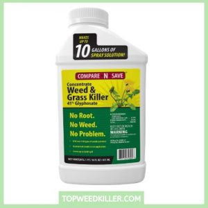 _Ragan & Massey 016866 Glyphosate Concentrate Grass and Weed Killer