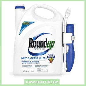 Roundup 5109010 Weeds & Grass Killer III Ready-to-use Wand Sprayer
