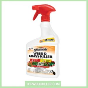 Spectracide HG-96428 Weed and Grass Killer, Ready-To-Use
