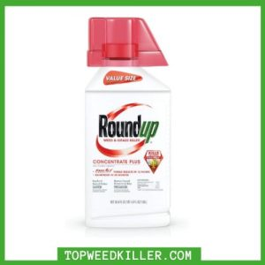 best weed and grass killer for large areas