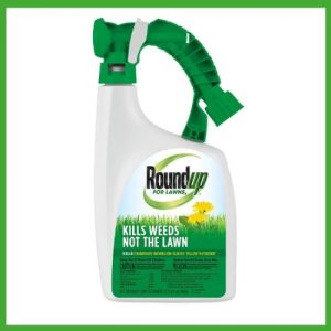 best weed control spray