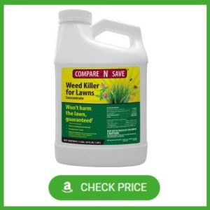 best weed killer for clover and creeping charlie