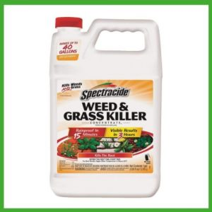 best weed sprayer for large areas