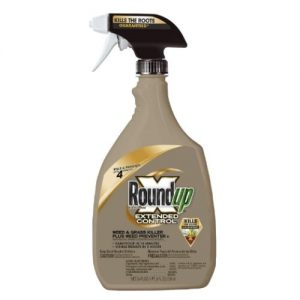 Best Weed Killer Patio 2020 Review