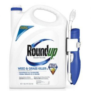 Best Weed Killer at Home Depot Reviews