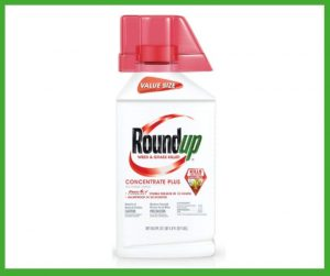 Best Weed Killer for Southern Lawns 2020