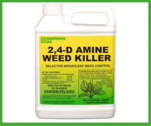 _Best Weed Killer for Southern Lawns review