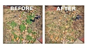 Kill Weeds in Rocks