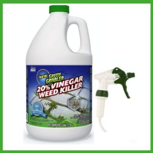 best organic weed killer for lawns