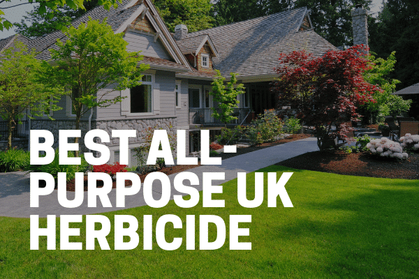 best all purpose uk weed killer garden and lawn