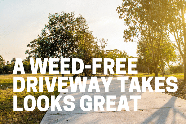 a driveway without any weeds
