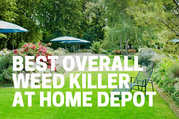 best overall weed killer at home depot