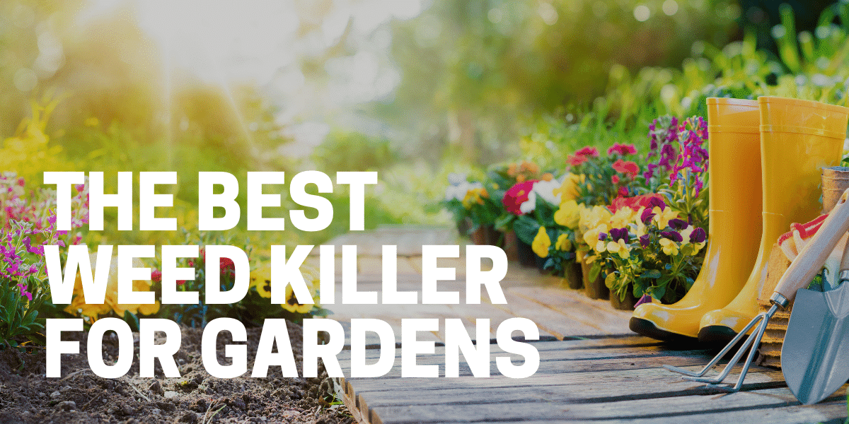 best weed killer for gardens and landscape beds