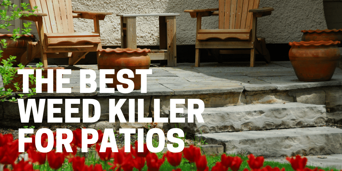 best weed killer for patio and between pavers used by gardener