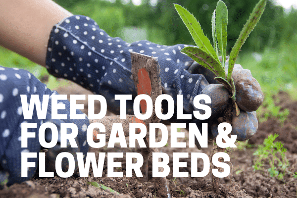 best weeding tools for flower beds gardens and driveways