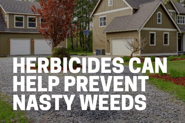 herbicide being applied on driveways to kill weeds