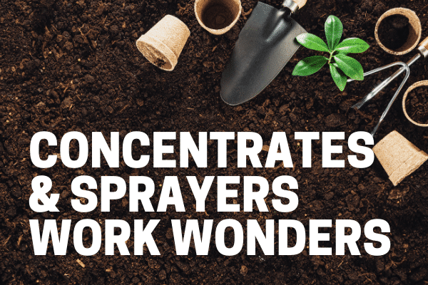 homeowner using best weed killer concentrate for gardens
