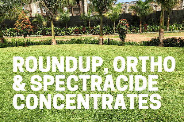 killing weeds with roundup ortho spectracide in large area