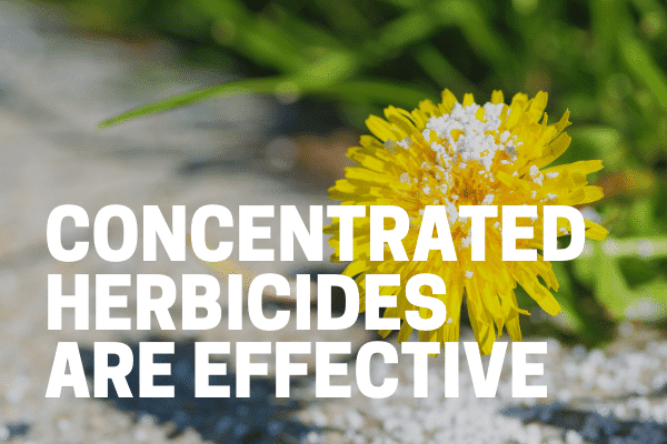 professional using herbicide concentrate