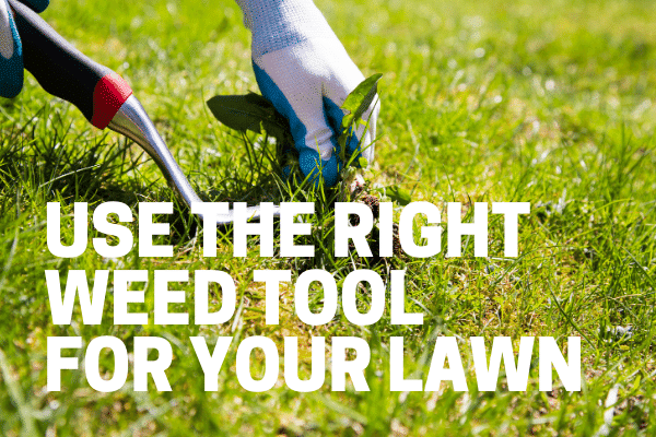 woman using the right weeding tool for large areas and lawns