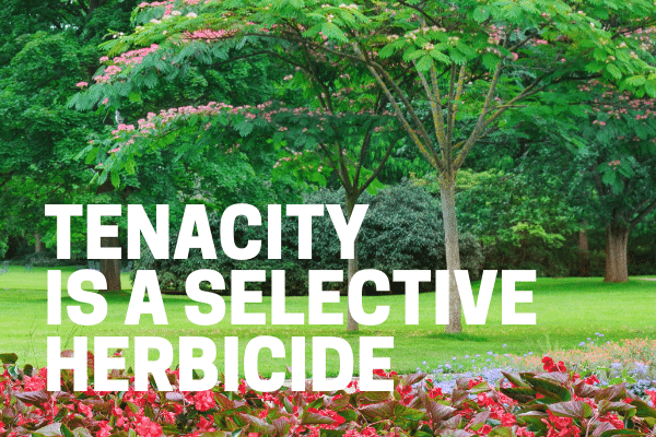 tenacity selective herbicide used on lawn