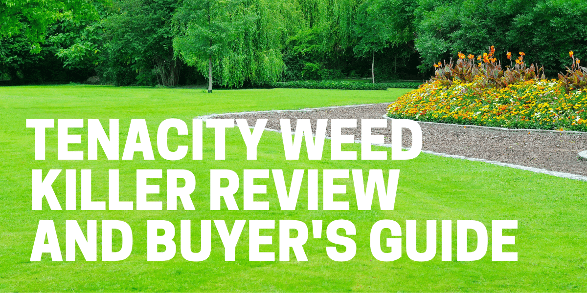 tenacity weed killer review used on lawn to kill and prevent weeds