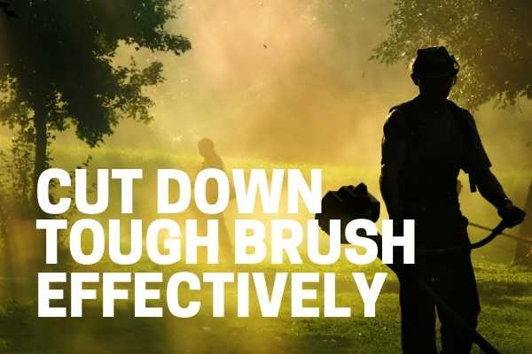best brush cutter for high weeds